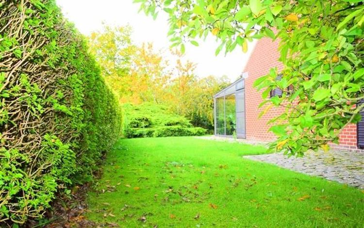 acheter maison 0 pièce 229 m² tournai photo 3