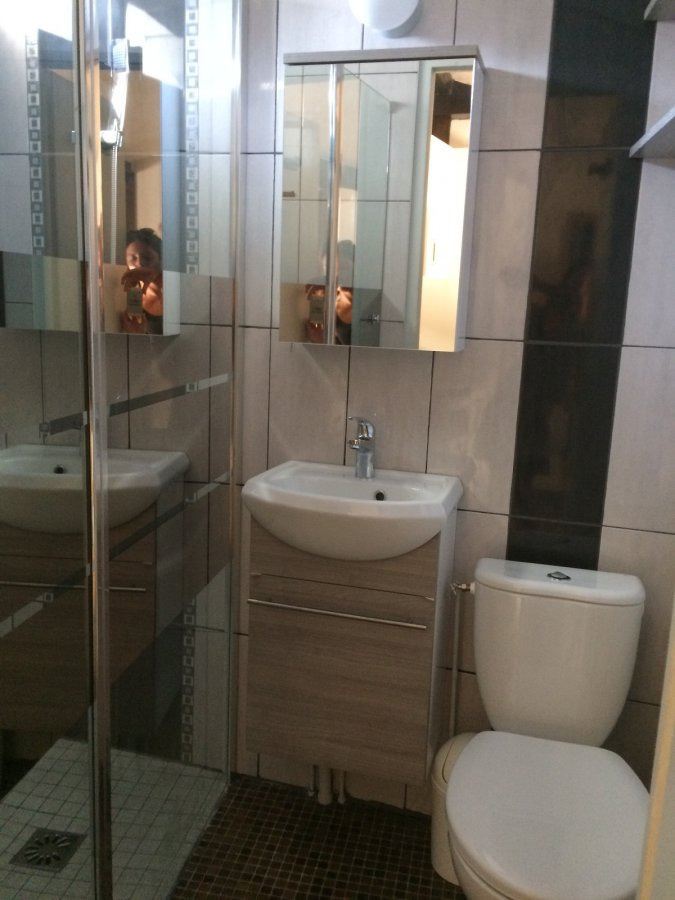 louer appartement 1 pièce 18 m² nancy photo 2