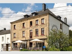 Retail for sale 17 bedrooms in Florenville - Ref. 6194873
