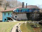 Maison à vendre F7 à Ban-de-Sapt - Réf. 4390073