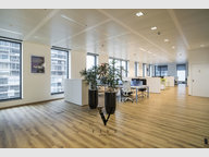 Office for rent in Belval - Ref. 6694089