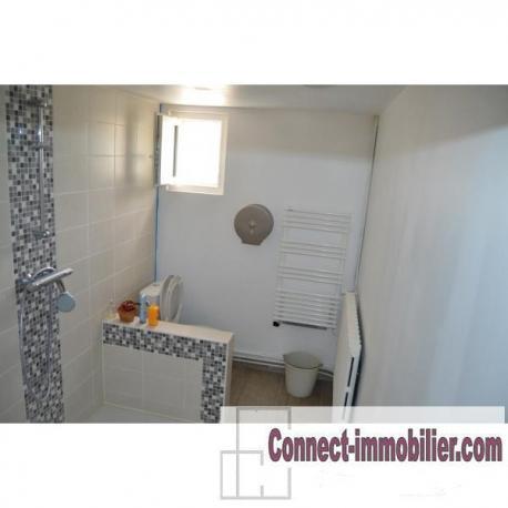 acheter maison 7 pièces 160 m² lesquielles-saint-germain photo 7