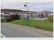 Local commercial à louer à Steinsel - Réf. 6659529