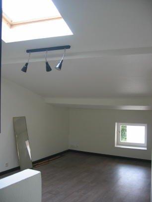 louer appartement 1 pièce 15 m² nancy photo 3