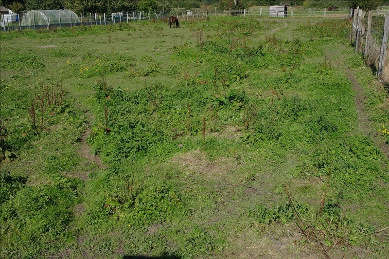 Terrain non constructible à vendre à Auberchicourt