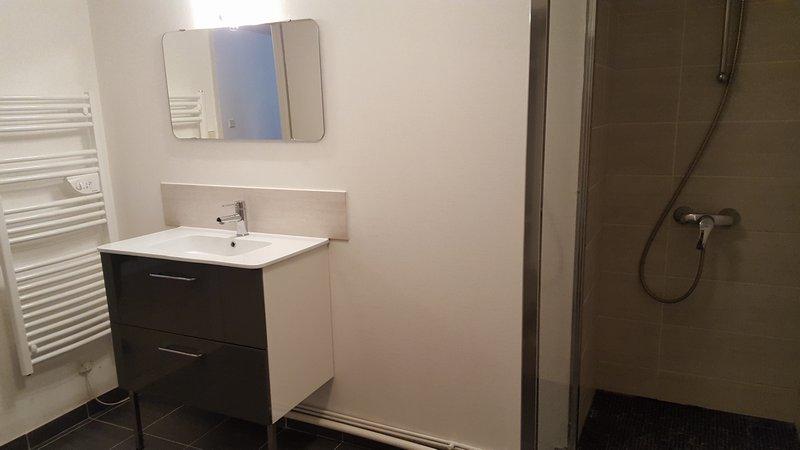 louer appartement 2 pièces 64 m² nancy photo 6