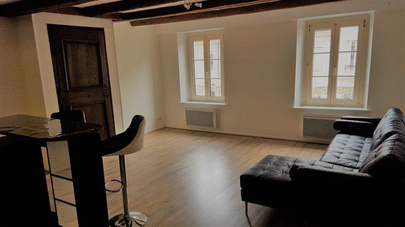 louer appartement 2 pièces 64 m² nancy photo 1