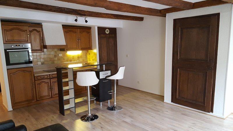 louer appartement 2 pièces 64 m² nancy photo 2