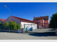 Commerce à vendre F12 à Horbourg-Wihr - Réf. 5084153