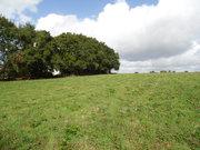 Terrain constructible à vendre à Blain - Réf. 6559993