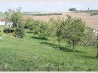 Terrain constructible à vendre à Pierrefitte - Réf. 6953721