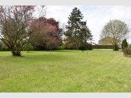 Terrain constructible à vendre à Gravelotte - Réf. 6351865