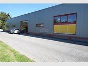 Warehouse for rent in Bertrange - Ref. 6365177