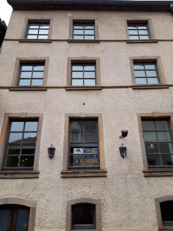 renditeobjekt kaufen 6 schlafzimmer 240 m² esch-sur-sure foto 1
