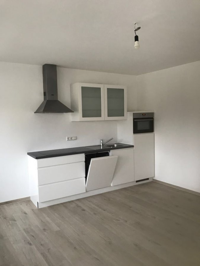 louer ids_global_subimmotype_apartment 1 chambre 55 m² steinsel photo 1