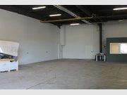 Entrepôt à louer à Trier - Réf. 6358042