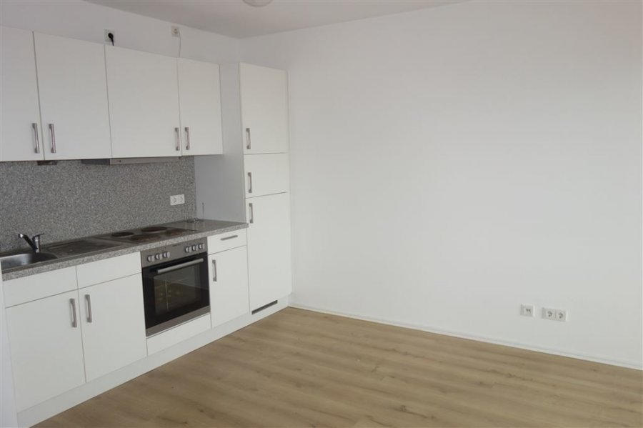 apartment for rent 1 room 28.95 m² trier photo 2