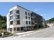 Bureau à louer à Luxembourg-Centre ville - Réf. 6650650