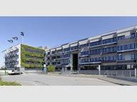 Bureau à louer à Windhof - Réf. 7103786