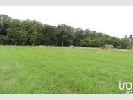 Terrain constructible à vendre à Auzainvilliers - Réf. 7256618
