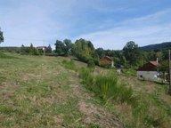 Terrain constructible à vendre à Mandray - Réf. 6019882