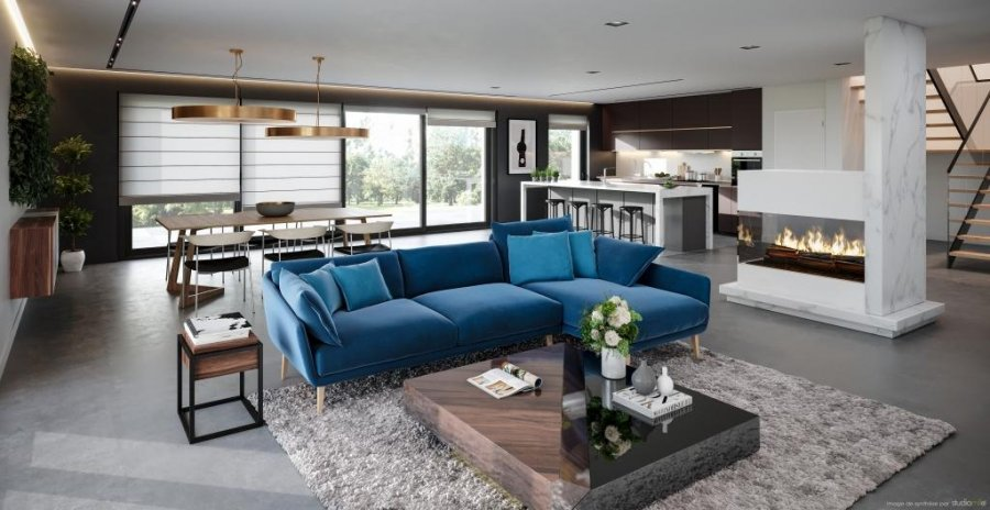acheter maison jumelée 5 chambres 270 m² luxembourg photo 3