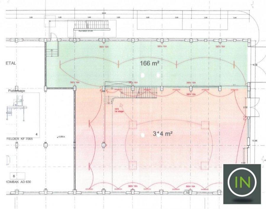 louer entrepôt 0 chambre 1293.3 m² esch-sur-alzette photo 1