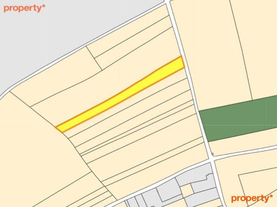acheter terrain non constructible 0 chambre 0 m² sandweiler photo 1