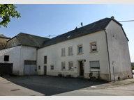 Bauernhaus zum Kauf in Palzem - Ref. 3919674