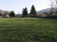 Terrain à vendre à Bitschwiller-lès-Thann - Réf. 5120330