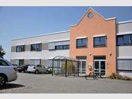 Bureau à louer à Windhof (Koerich) - Réf. 5312074