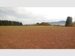 Terrain à vendre à Anould - Réf. 5001306