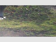Terrain constructible à vendre à Farébersviller - Réf. 6739034