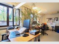 Bureau à louer à Luxembourg-Hollerich - Réf. 6624602