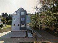 Wohnung zur Miete 1 Zimmer in Dudelange - Ref. 6952282