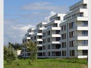 Appartement à louer 1 Chambre à Bertrange - Réf. 5072730