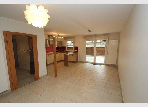 Apartment for rent 1 bedroom in Moutfort (LU) - Ref. 6920794