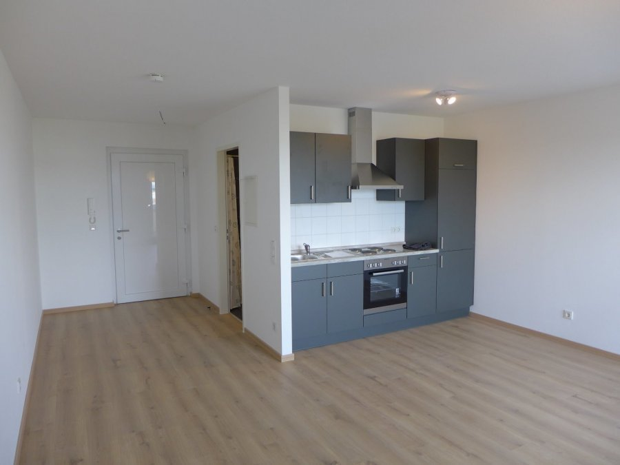 apartment for rent 1 room 38 m² trier photo 2