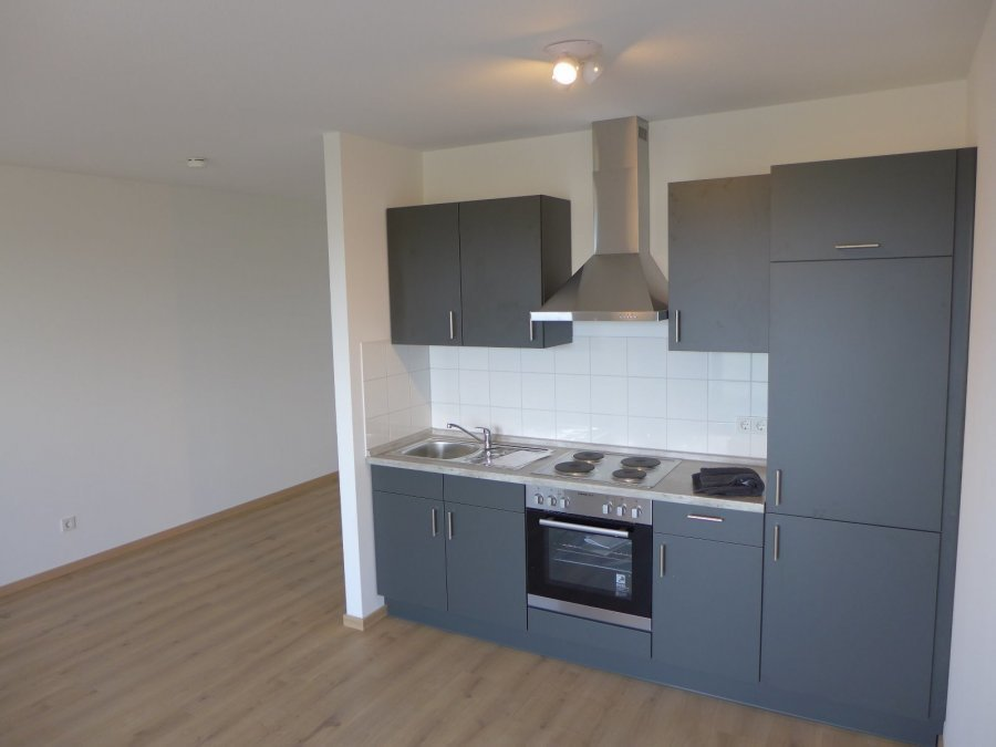 apartment for rent 1 room 38 m² trier photo 3