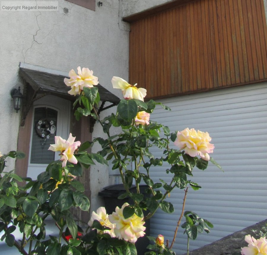 haus kaufen 5 zimmer 125 m² lemberg foto 3