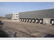 Entrepôt à vendre à Arlon - Réf. 6196586