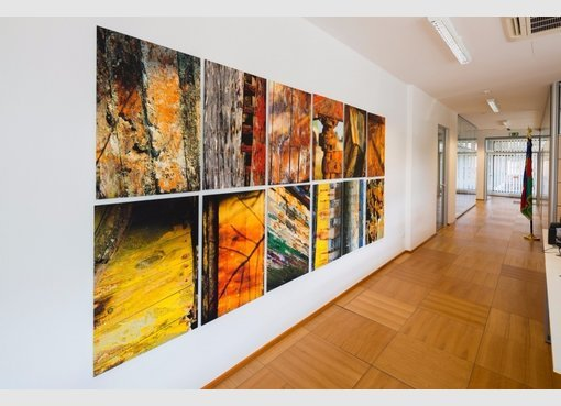acheter bureau 0 chambre 500 m² luxembourg photo 4