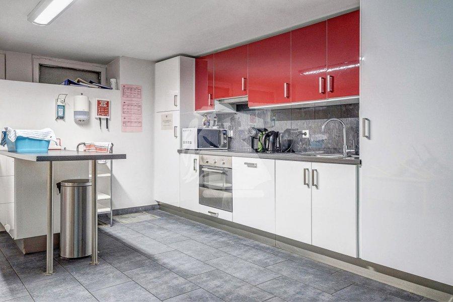 acheter maison 5 chambres 340 m² luxembourg photo 2
