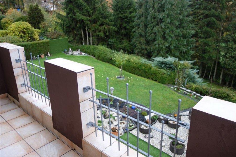 wohnung mieten 1 zimmer 35 m² trierweiler foto 5