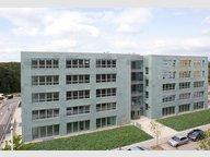Bureau à louer à Senningerberg (LU) - Réf. 6081402
