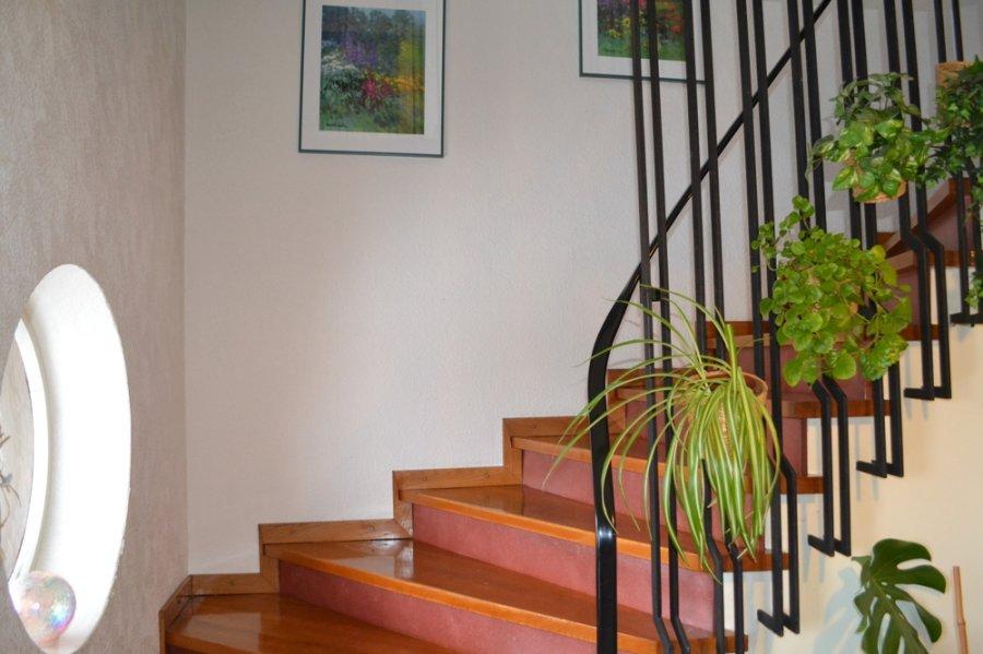 einfamilienhaus kaufen 8 zimmer 225 m² bitburg foto 4