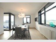 Wohnung zur Miete 2 Zimmer in Belval - Ref. 6951562