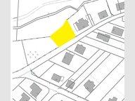 Terrain constructible à vendre à Weiskirchen - Réf. 6579338