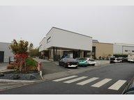 Entrepôt à vendre à Bascharage - Réf. 6591626