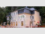 Fonds de Commerce à vendre à Luxembourg-Pulvermuehle - Réf. 6411658